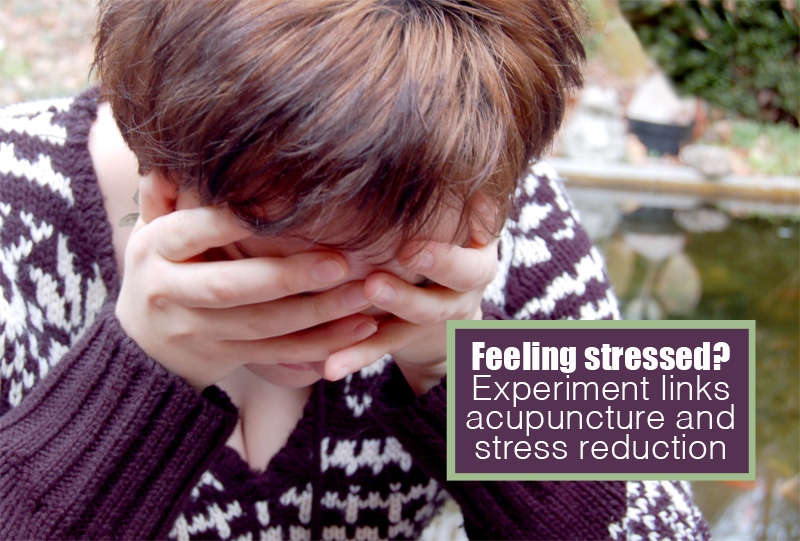 acupuncture and stress