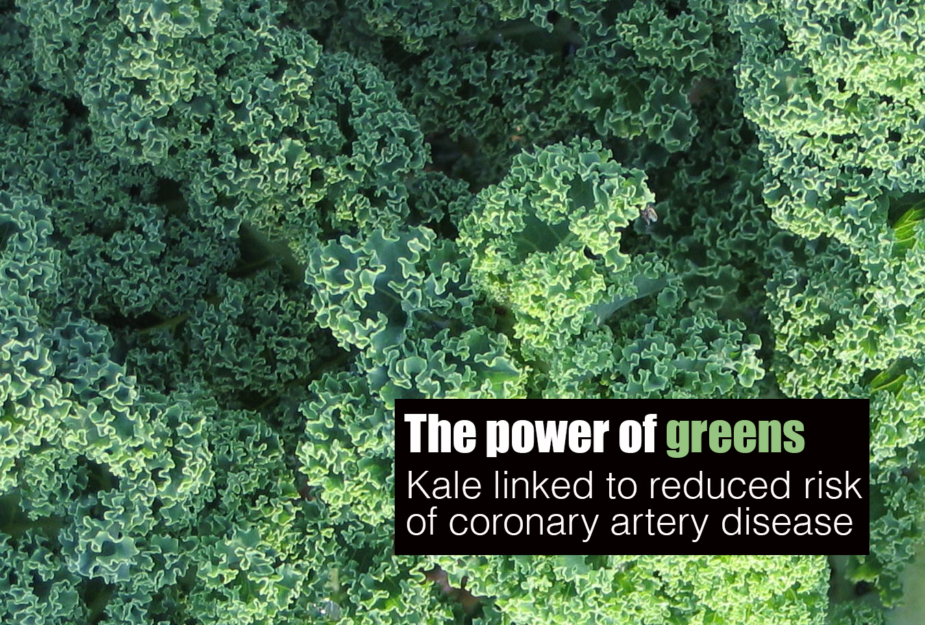 kale and disease